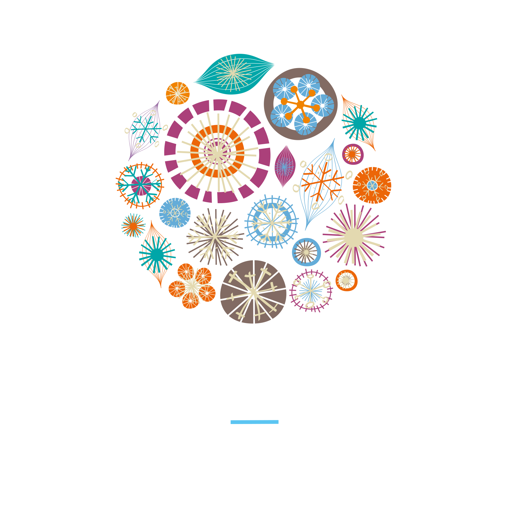 CoconutSailing Logo